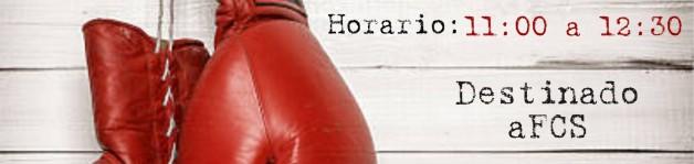 Entrenamiento de Tecnificación de Boxeo